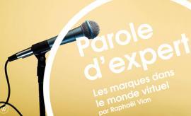 parole-expert-when-brands-take-over-virtuals-worlds
